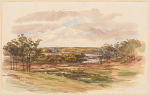 Samuel Elyard's Allan's Bush in 1868 in Elyard's Collection of Views in NSW (source: SLNSW)