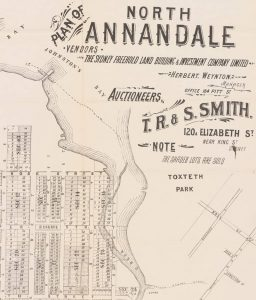 Extract from Plan of North Annandale subdivision being sold by Sydney Freehold Land Building & Investment Company, 1900 (source: National Library of Australia)